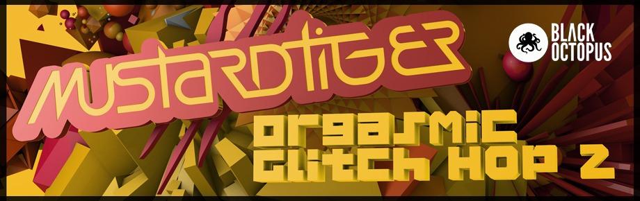 Orgasmic-Glitch-Hop-2BANNER