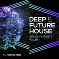 Future house massive presets