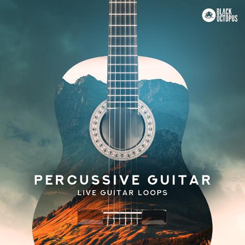 Black Octopus Sound - Percussive Guitar